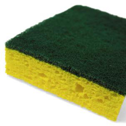 Scotchbrite Sponge