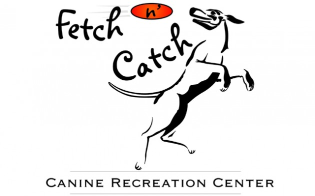 Fetch N Catch