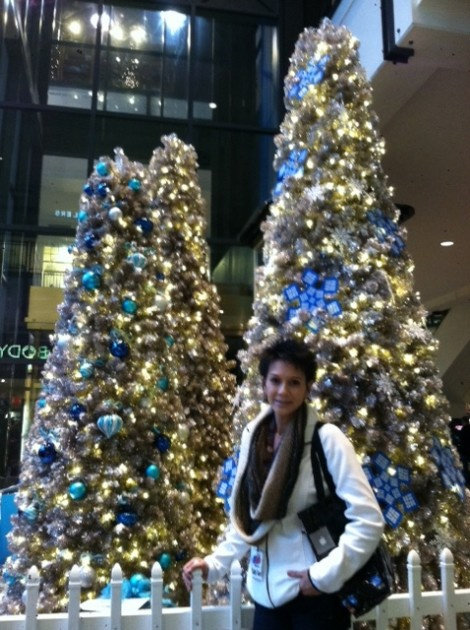 MOA Holiday Decorations