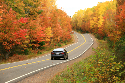 Fall Driving