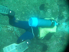 Scuba diver finds friend's lost credit card off Florida coast