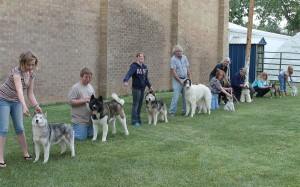 Central Wyoming Kennel Club