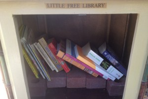 Little Free Library Books