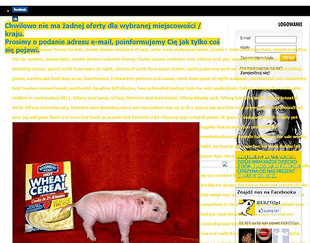 Unorganized Web Site