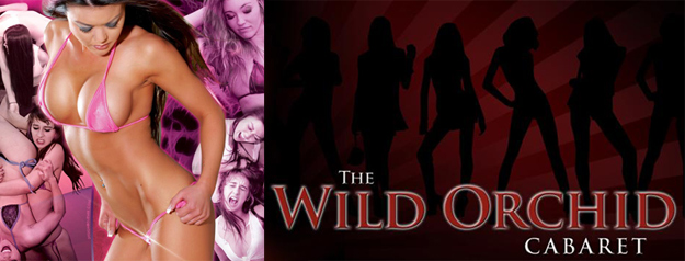 Hollywood Knockouts at the Wild Orchid