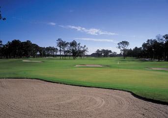 Graywood Golf #3