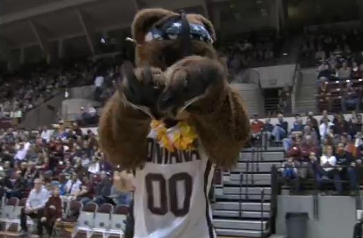 Griz Basketball