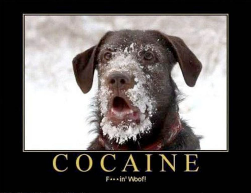 how to know if cocaine is good