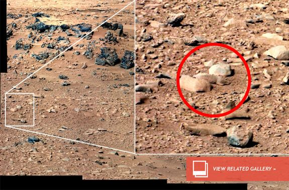 Is This Image Of The 'Mars Rat' Real Or A Hoax?