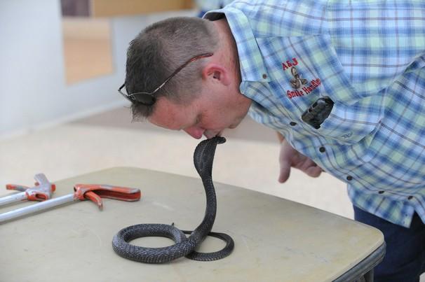A&J Snake Handlers